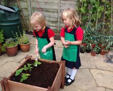 My Real Garden Children's Range
