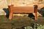 Standard Wooden Manger Raised Bed