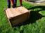 Tortoise Hibernation Box with lid