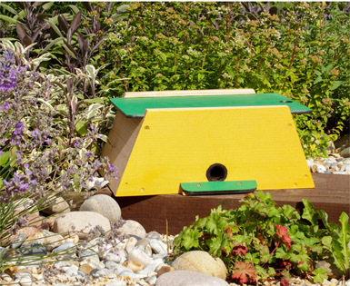 Bumblebee Nester & Mini Mammal Habitat