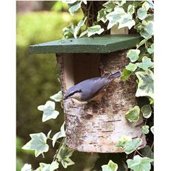 CJ Wildlife Open Birch Log Bird Nest Box