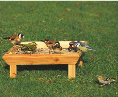 Square Ground Bird Feeding Table