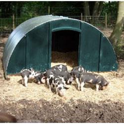 Pig Arks - 4 Sizes
