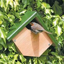 Robin & Wren Nest Box