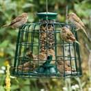 CJ Wildlife Guardian Seed Bird Feeder