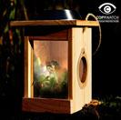 The Illuminated Minibeast Centre - Solar Insect Theatre