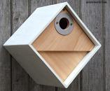 The Urban Nest Box