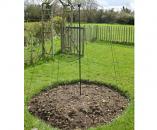 Parasol Plant Support Frame